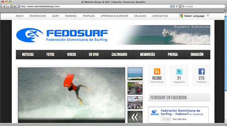 fedosurf-website
